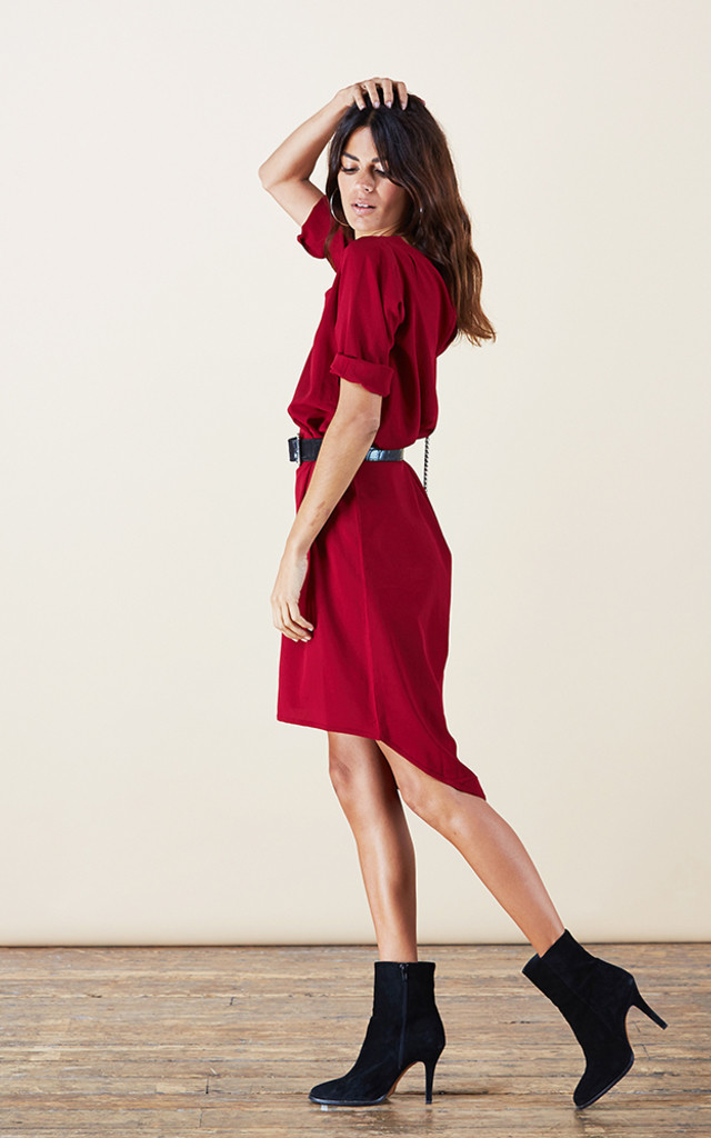 Chiquita Dress in Oxblood image