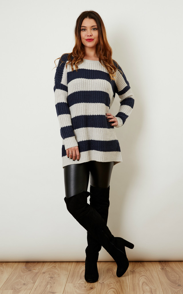 Navy and Light Grey Stripey Knit by Noisy May
