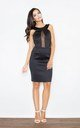 Black Fitting Dress with Transparent Stripe by FIGL