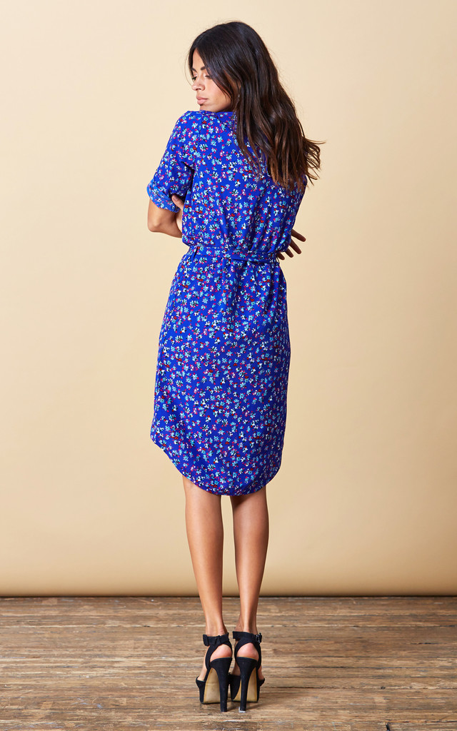 Chiquita Dress in Royal Blue Floral image