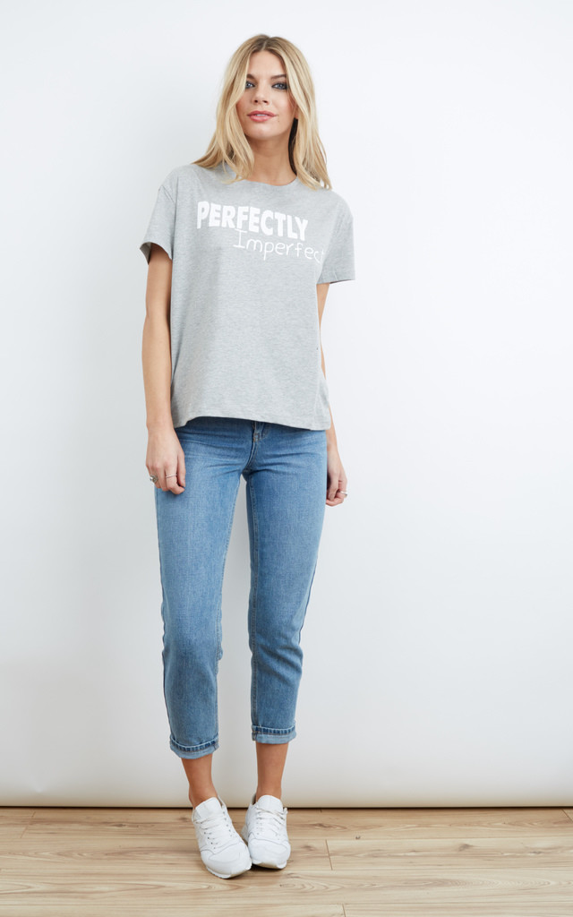 Grey Perfectly Imperfect Slogan T-Shirt by Noisy May