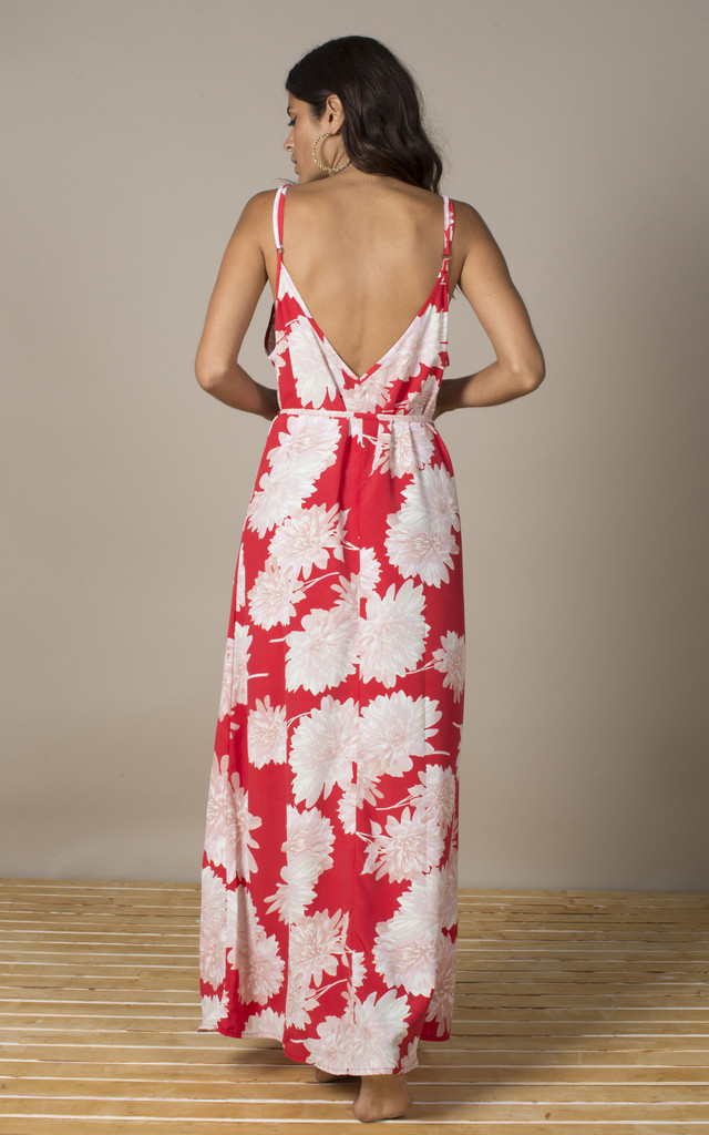 Giselle Dress in Red Bloom image