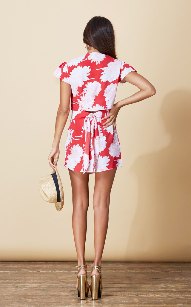 Zuzu Mini Skirt in Red Bloom image