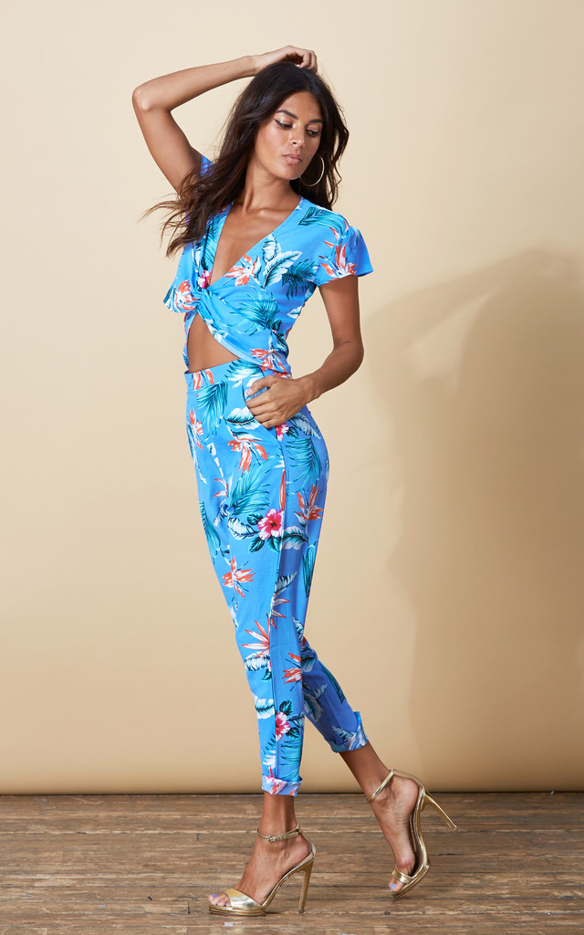 Fabiana Pants in Sky Blue Tropical image