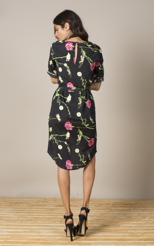 Chiquita Dress in Carnation and Daisy image