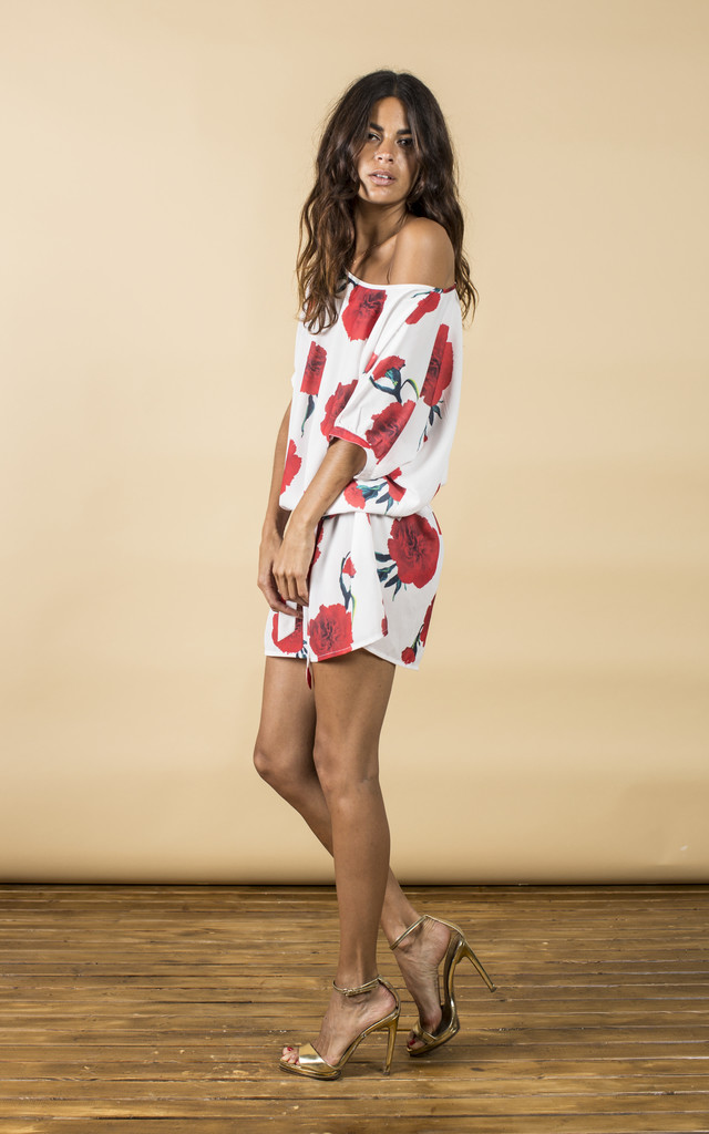 Ibiza Dress in Red Carnation image