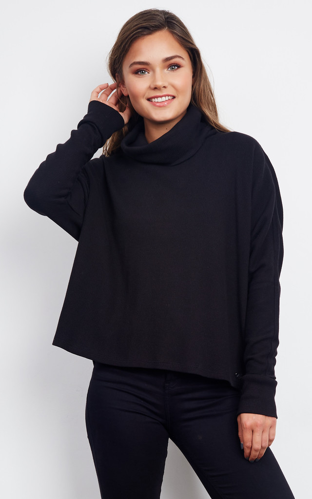 Black Long Sleeve Roll Neck Top by Noisy May