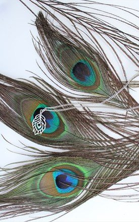 Peacock feather silver charm collar necklace by Kate Coleman