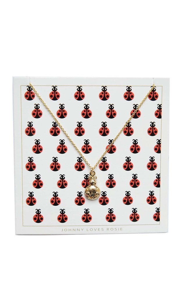 Ladybird Gift Card Necklace by Johnny Loves Rosie