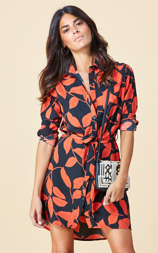 Mini Shirt Dress in Rusty Leaf image