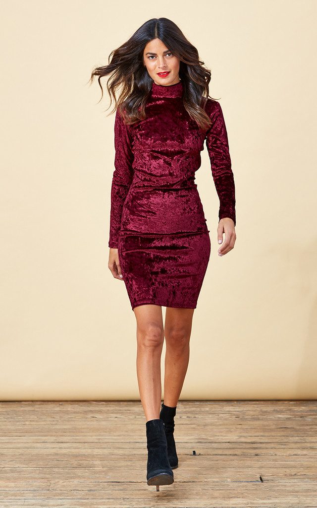 Samara Dress in Wine Red image