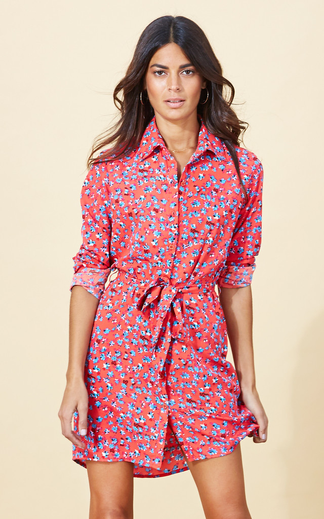 Mini Shirt Dress in Red Ditzy image