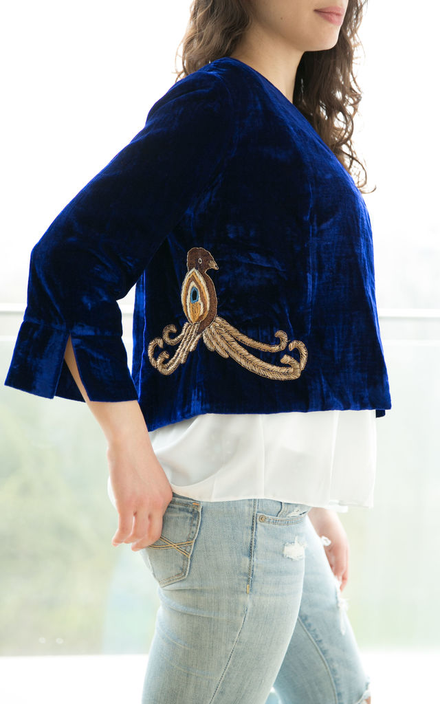 Blue Velvet Jacket by be-snazzy
