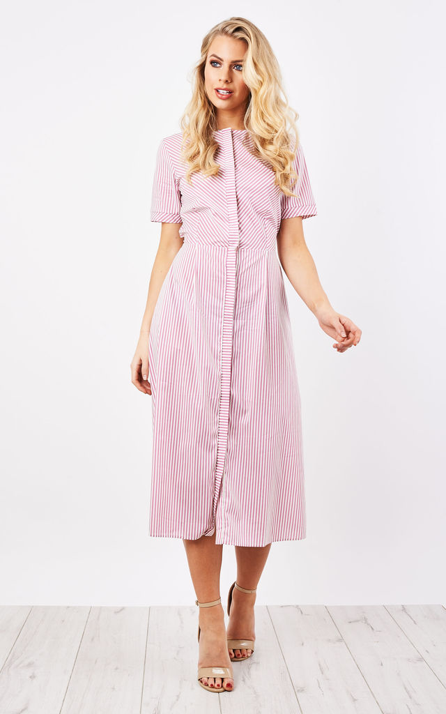 Pink Stripe Midi Dress by Lily and Carter London