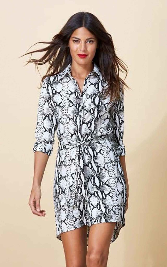 Mini Shirt Dress in Silver Python image