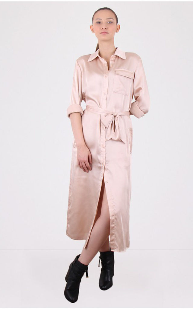 Collared Button Down Champagne Shirt Dress by MISSTRUTH