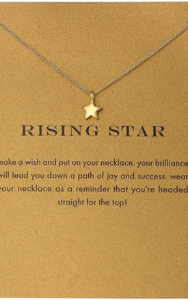 Gold Plated Rising Star Necklace by Helix and Felix