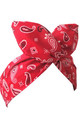 Red Paisley Wired Headband by LULU IN THE SKY