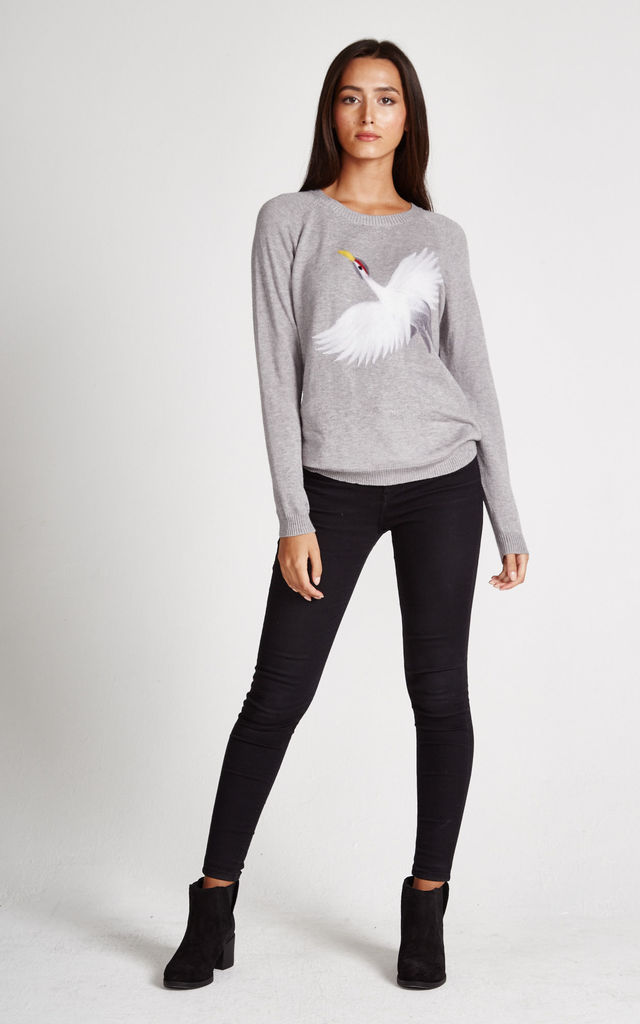 Grey Swan Jumper by Liquorish