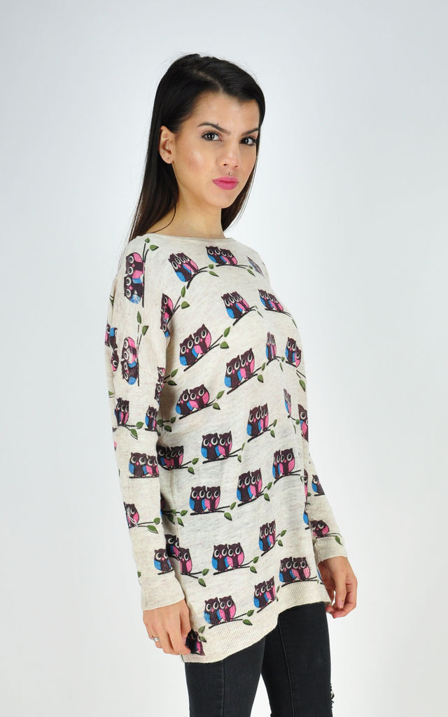 Cream Oversized Jumper with All Over Owl Print by GOLDKID LONDON