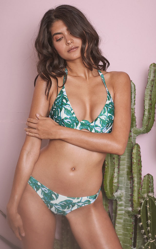 LOHA GREEN PALM HIPSTER BIKINI BRIEF by Wolf & Whistle