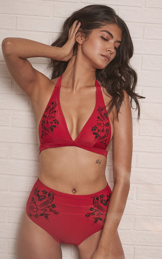 LANA RED EMBROIDERED HIGH WAIST BIKINI BRIEF by Wolf & Whistle