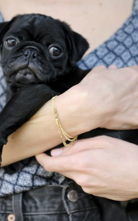 Leo Morse Code Bracelet by Leo With Love