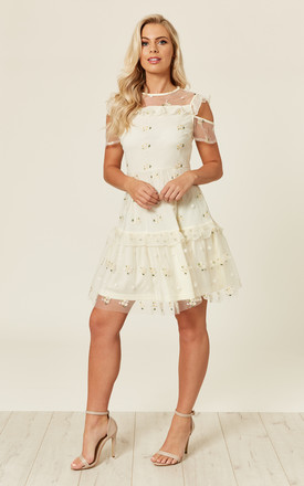 Sheer Panel Embroidered Mini Dress by ROCK KANDY
