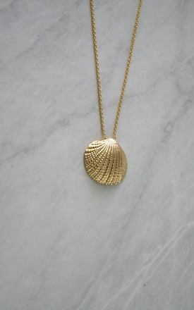 Beach Shell Gold Chain Necklace by Gold Lunar