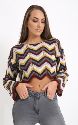 Multi Wine Coloured Cropped Knitted Jumper by PRETTY AND PARTY
