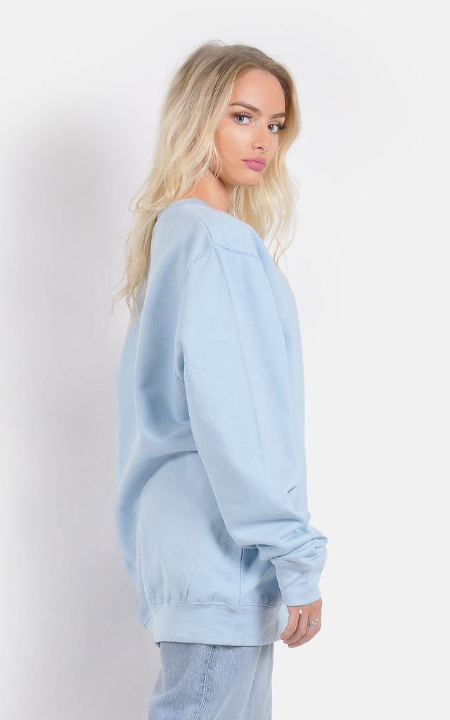 Baby blue oversized cosy winter Jumper/Dress by The Left Bank