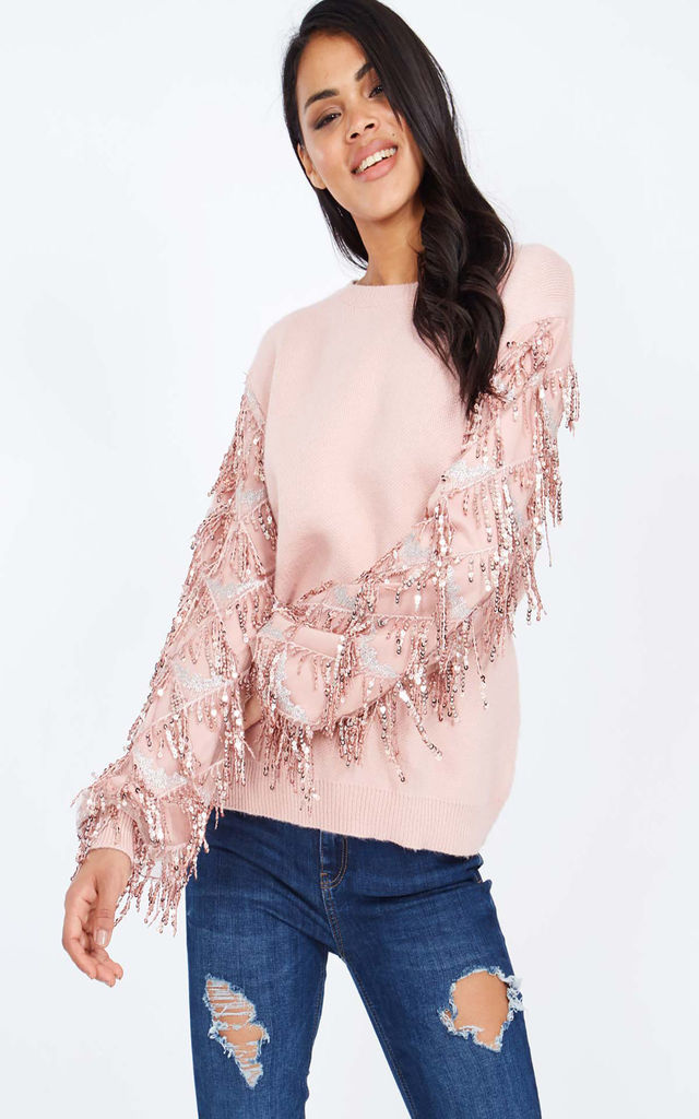 SUSAN – Mesh Water Fall Sequin Sleeve Pink Jumper by Blue Vanilla
