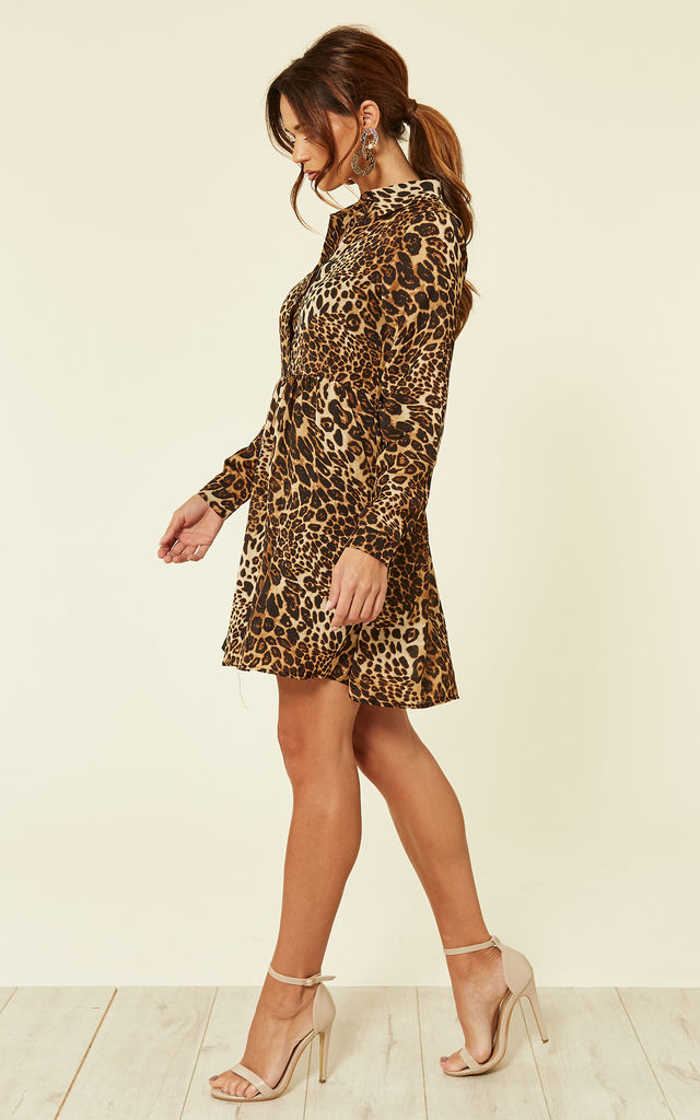 Leopard Print Shirt Dress by ROCK KANDY