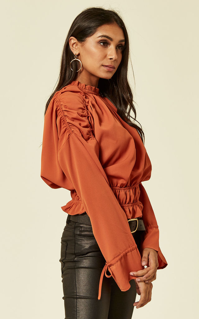 Rust Ruched Long Sleeve Crop Top by UNIQUE21