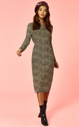 Leopard Print Mesh Bodycon Dress by Glamorous Product photo