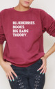 Blueberries. Books. Big Bang Theory Slogan Burgundy Oversized Sweater (Variant) by Top Threads