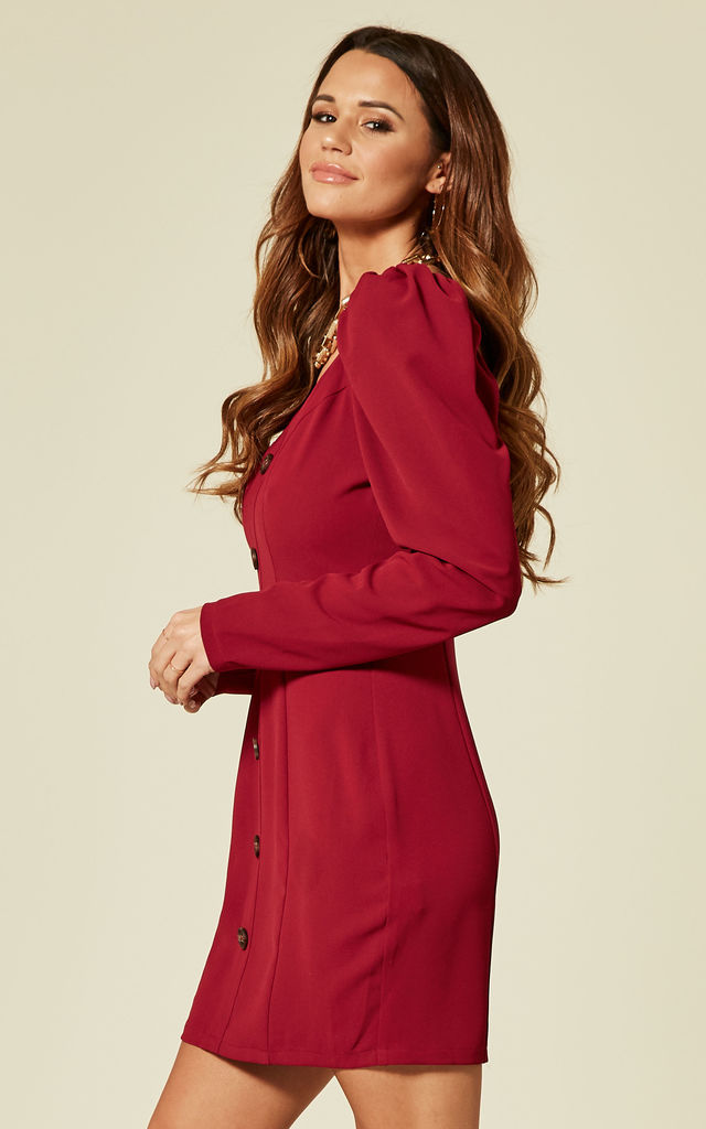 Red button down long sleeve dress by Another Look