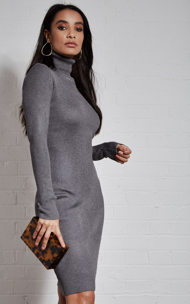 Grey Roll Neck Knitted Long Sleeve Dress by India Gray