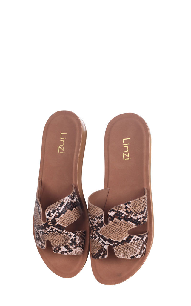 Greece Snake Print Slip On Slider With Link Shaped Front Strap by Linzi