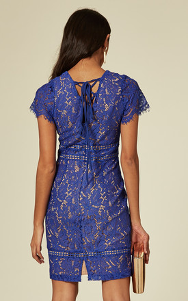 Blue Lace Bodycon Tie Back Mini Dress by ANGELEYE