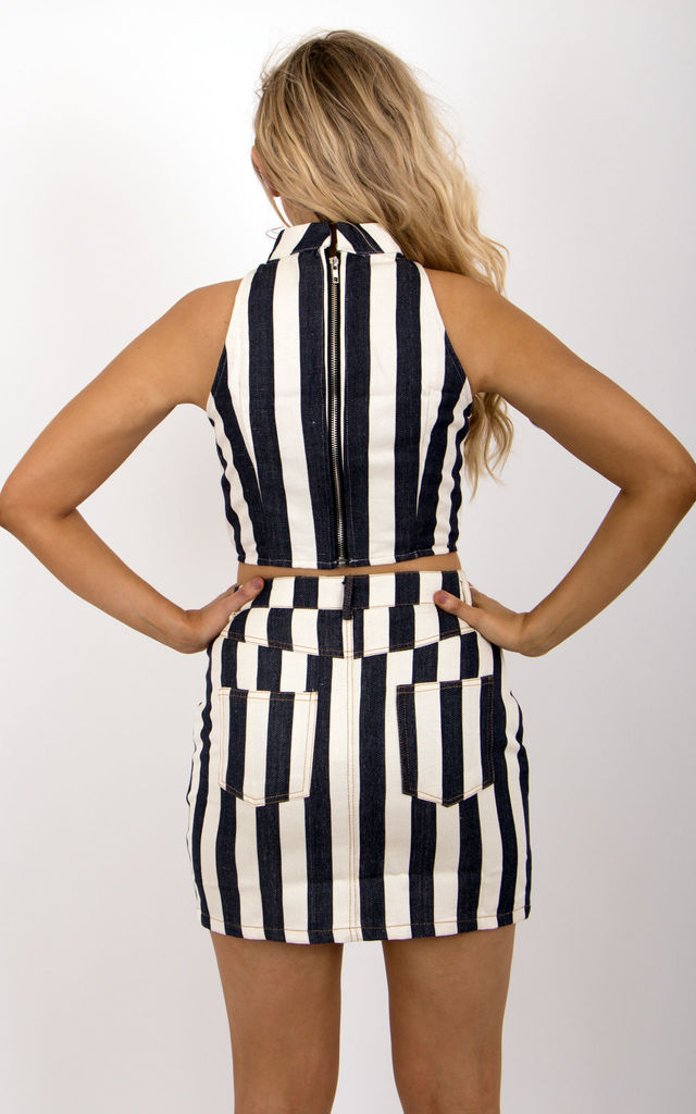 Striped Zip Up Front Skirt by MISSTRUTH