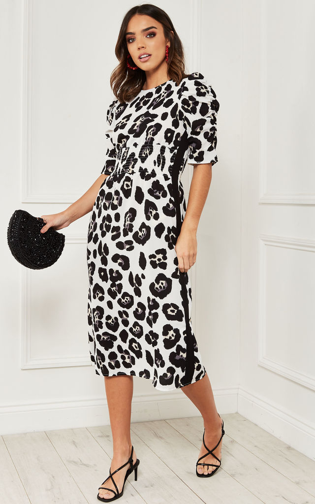 Midi Dress with side stripe in black and white leopard by Bella and Blue