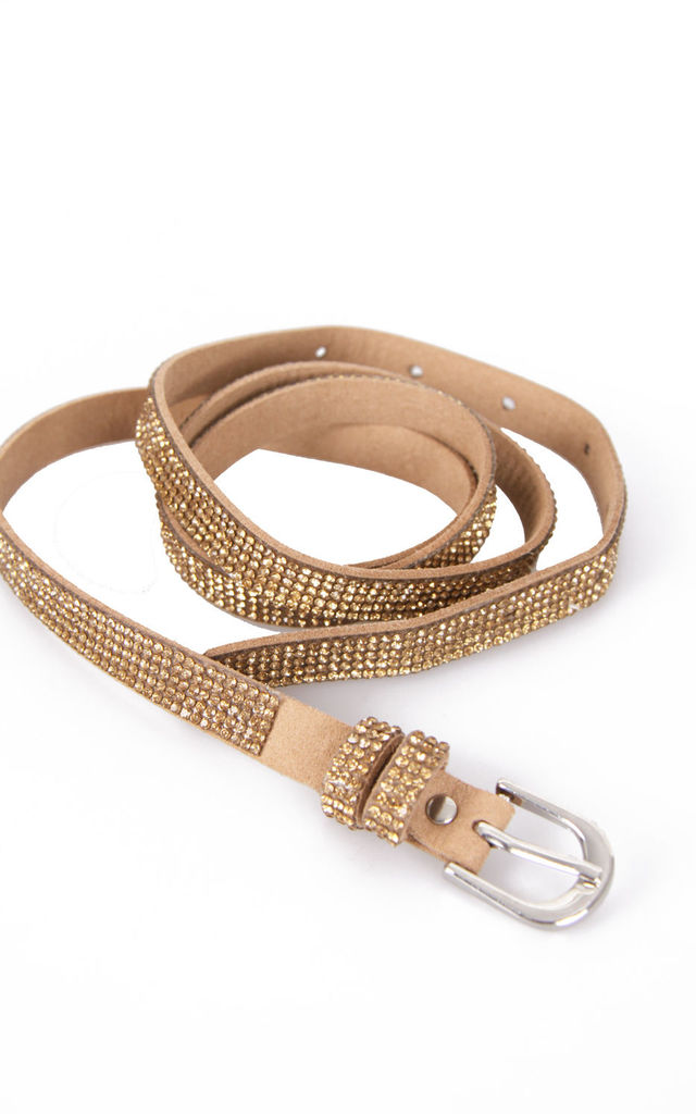 Diamante Embellished Buckle Belt in Gold by Urban Mist