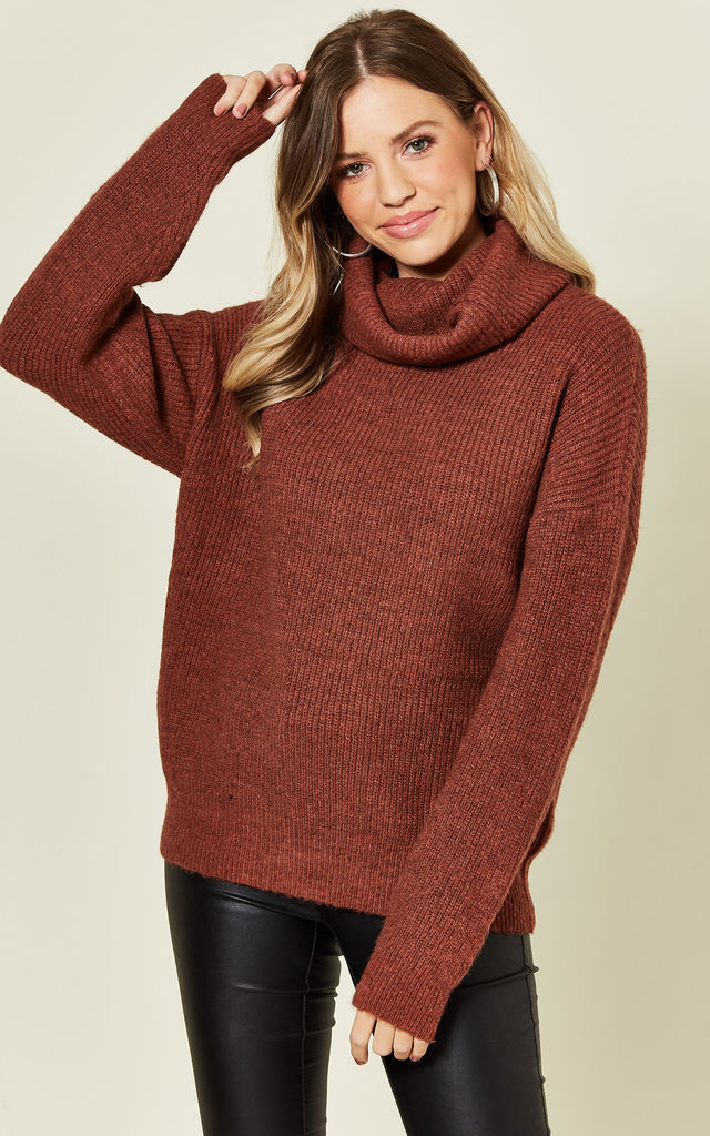 KLAUDIA ROLL NECK JUMPER IN TOBACCO BROWN by Blue Vanilla
