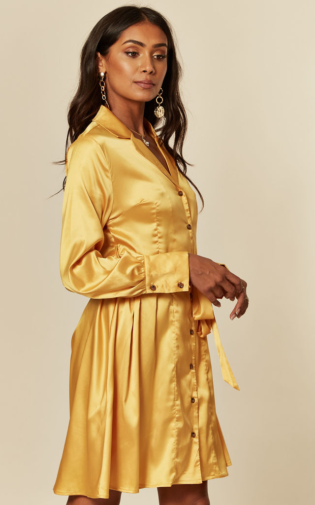 Long Sleeve Pleated Shirt Dress in Artisan's Gold by D.Anna