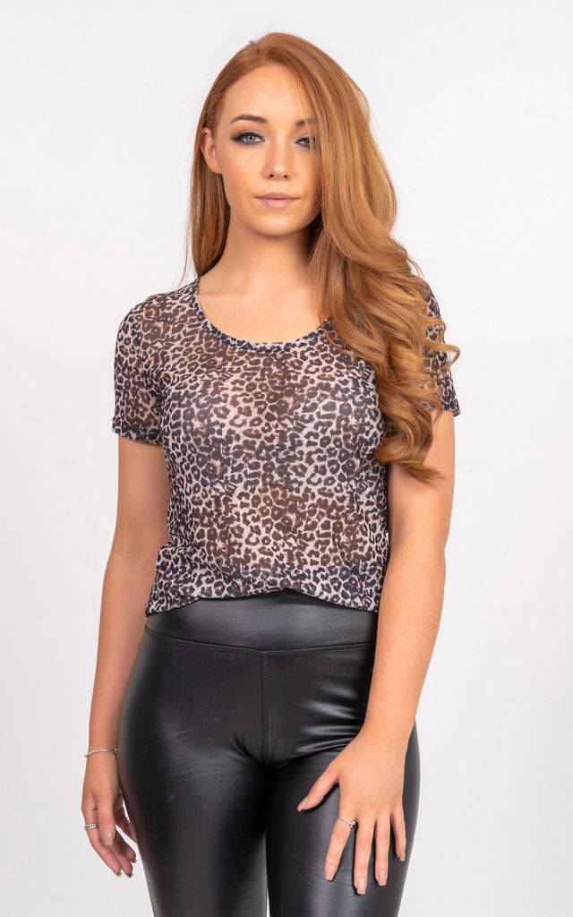 Short Sleeve Sheer Top in Leopard Print by Miss Attire