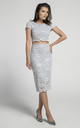Pencil Lace Skirt with High Waist in Grey by Bergamo