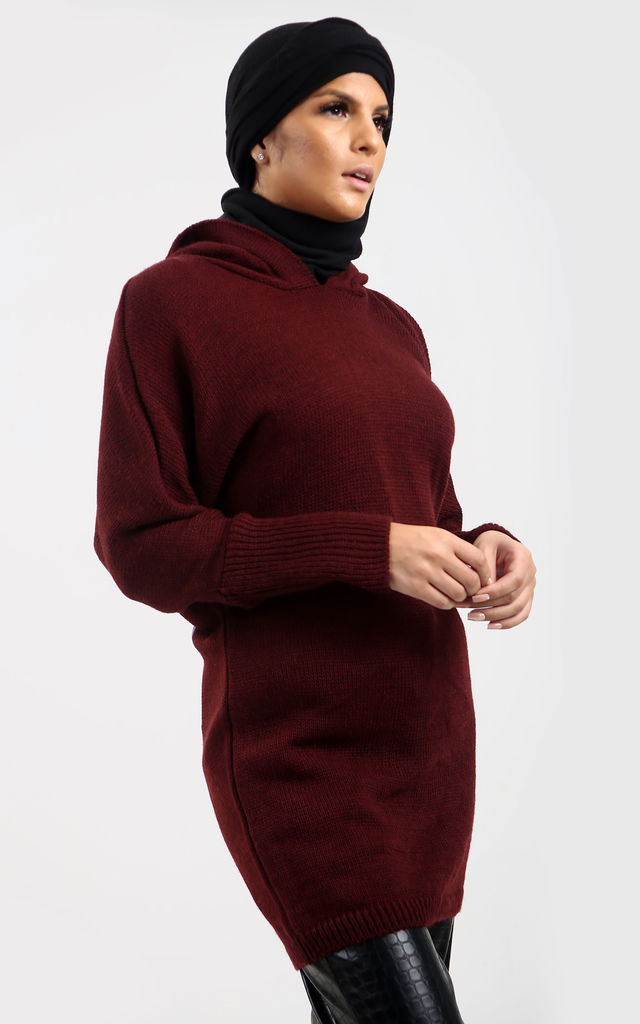 Burgundy Hooded Jumper with Angel Print by Neish Clothing