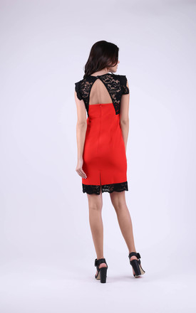 Wedding Sleeveless Mini Lace Dress in Red by Bergamo