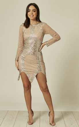 Kyle Nude Mini Dress with Sheer Crystal Sleeves by Aleena's Collection